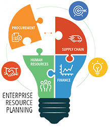 Custom ERP Solution Developments